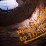 """You won't want to miss the grand finale of the exhibit - nicknamed the """"thunderdome"""" it will give you a taste of what the sinkhole collapse was like."""