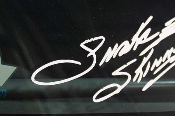 Snake Skinner II